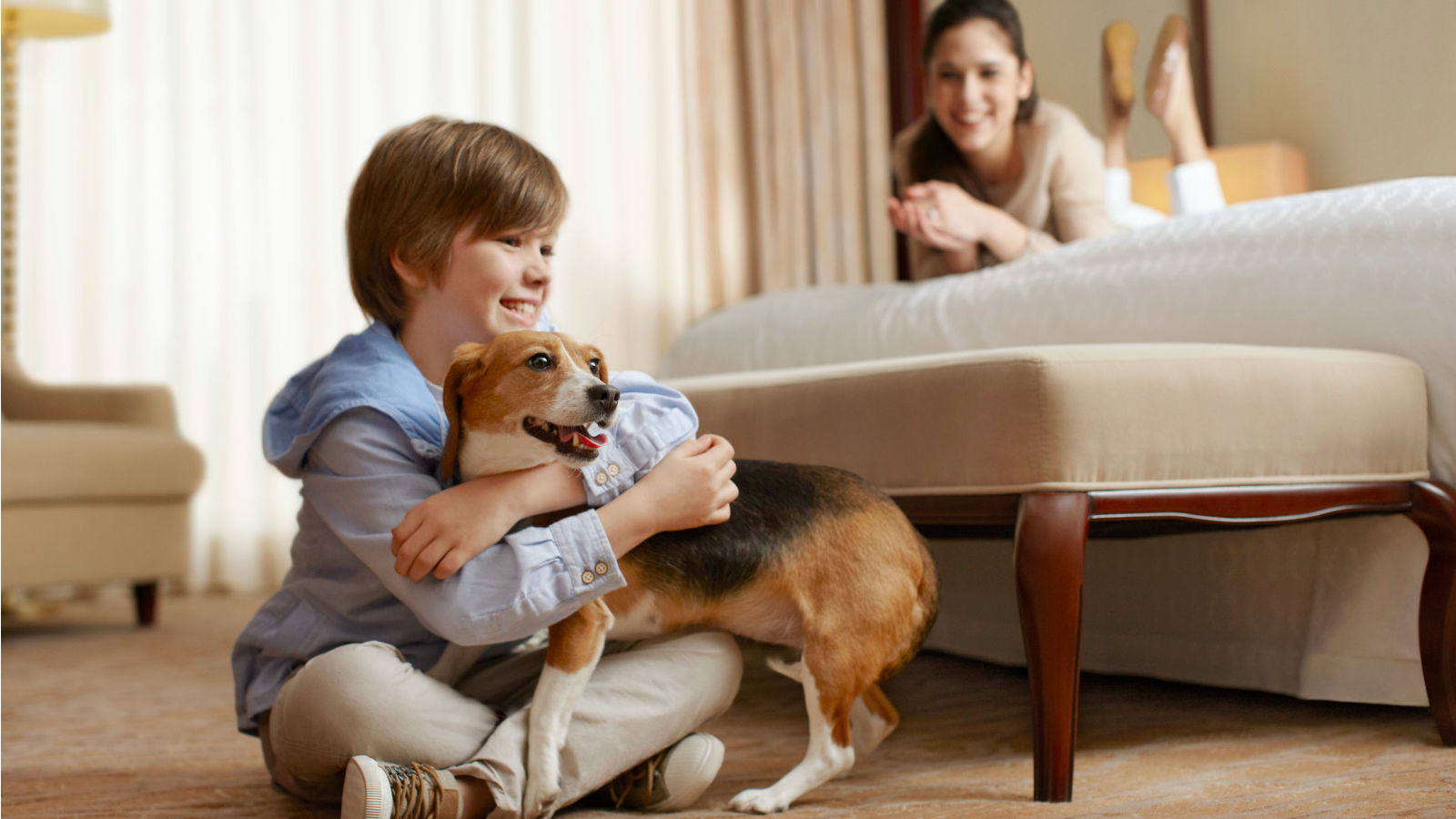 Anaheim Hotel Features - Pet-Friendly Hotel
